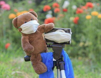 Sezon chorobowy tuż-tuż. Jak uniknąć infekcji wirusowych?