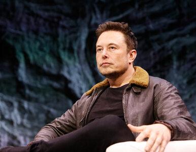 Elon Musk jak Krystyna Pawłowicz. Długo to nie potrwało