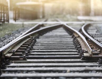 """Rewolucja na polskiej kolei. Pojawią się """"stacje na żądanie"""""""