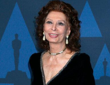 86-letnia Sophia Loren zagra u Jerzego Skolimowskiego. Co wiemy o filmie?