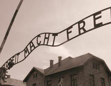 Muzeum Auschwitz prowadzi lekcje historii przez internet
