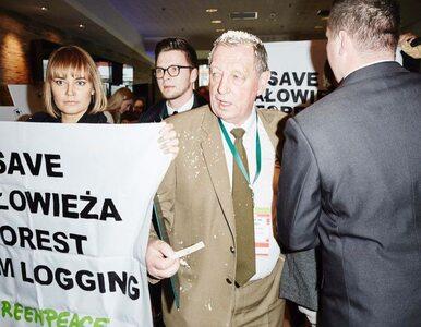 Szyszko obsypany trocinami przez Greenpeace na międzynarodowej...
