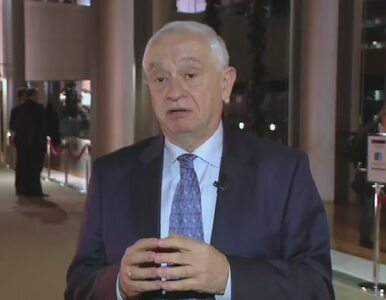 Zemke: Eurosceptycy mieli radość z wystąpień premier Szydło