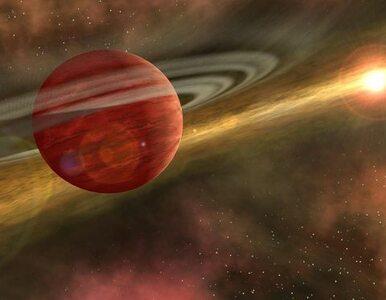 Centrum Nauki Kopernik radzi, jak przetrwać kataklizm