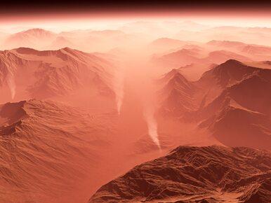 W 2018 roku polski robot Kret poleci na Marsa