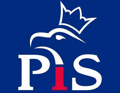 Najnowsza prognoza - PiS odbierze PO 5 mandatów. Gowin poza PE