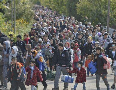 """Węgry wieszają na granicach """"głowy potworów"""". Chcą w ten sposób..."""