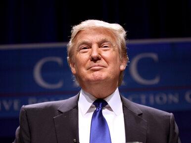 Media opublikowały fragmenty deklaracji podatkowej Trumpa. Biały Dom...