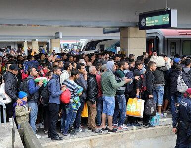 """Uchodźcy zawiedzeni warunkami życia w Europie. """"Wydaliśmy na podróż 11..."""