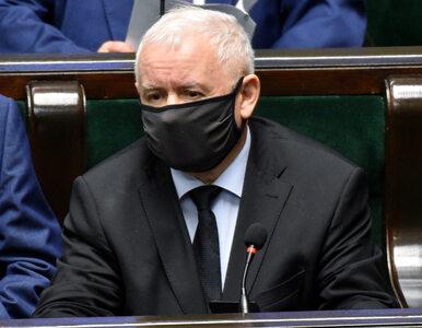 """Komu Polacy nie ufają? Kaczyński prowadzi, Budka """"goni"""" prokuratora..."""