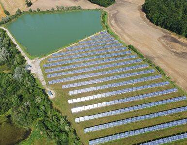 Columbus Energy – firma, która zaprzęgła słońce do pracy