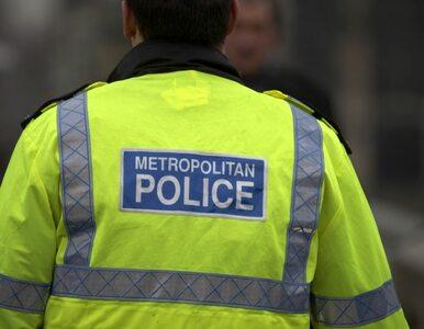 Ciało 30-letniego Polaka znalezione na ulicach Londynu