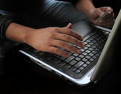 52 zarzuty za internetowe oszustwa. Podejrzany w areszcie