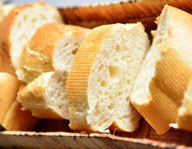 Ile kalorii ma bagietka? Czy można jeść ją na diecie?