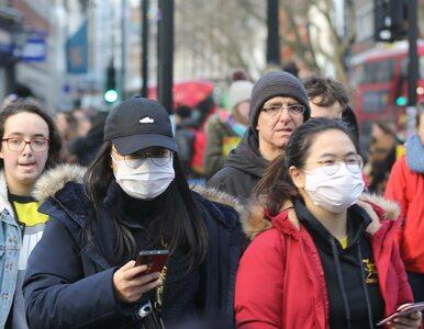 Epidemia głupoty groźniejsza od pandemii koronawirusa