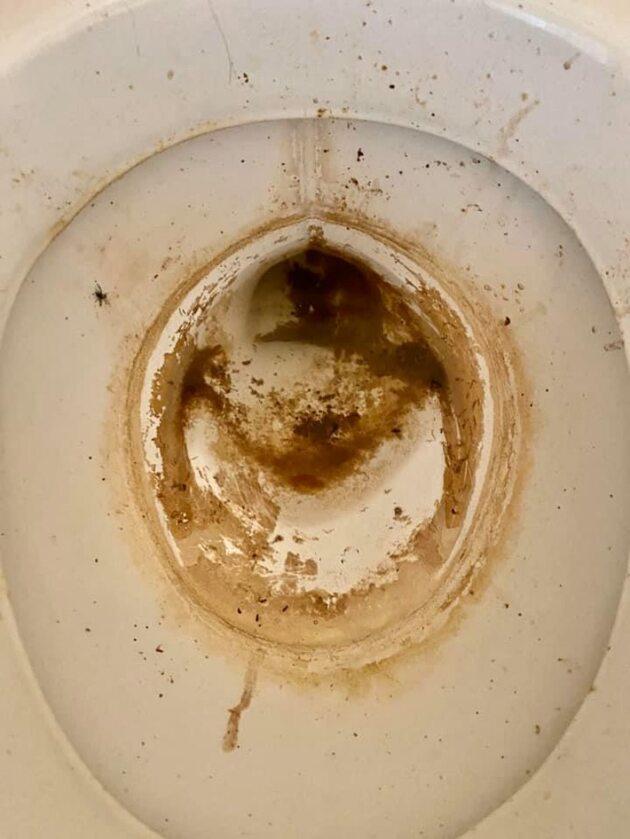 Wybaczcie nam zdjęcie toalety. Po prostu wybaczcie