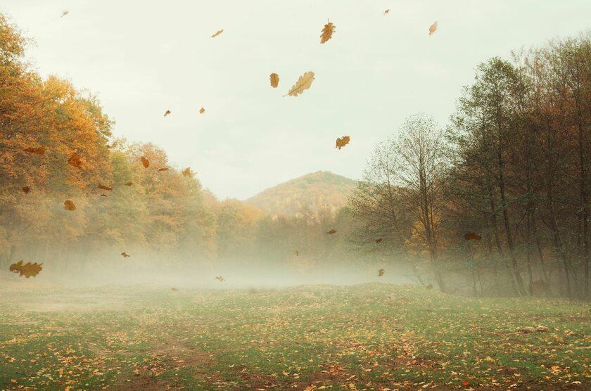 Wiatr, zdj. ilustracyjne