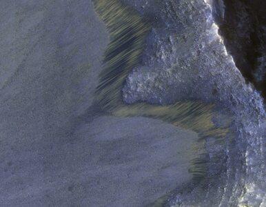 Lawiny błotne na Marsie. Naukowcy mają zaskakującą hipotezę