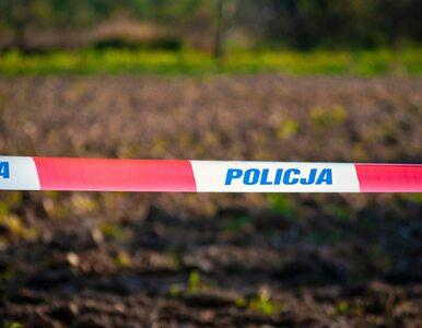 Gdańsk. Odnaleziono ciało młodej kobiety. To poszukiwana 24-latka
