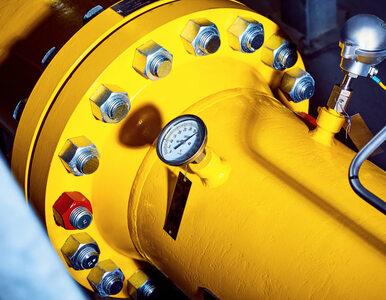 GAZ-SYSTEM w ubiegłym roku przesłał rekordowe 20,5 mld m sześc. gazu
