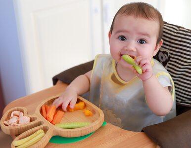 Metoda BLW, czyli niemowlę samo decyduje ile je. Czy to dobrze?