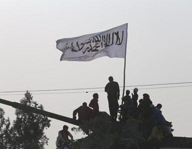 Mudżahedini staną przeciwko talibom? Jest mocna zapowiedź i apel do USA