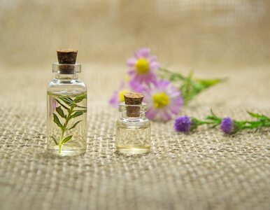 Czy można używać olejków eterycznych na swędzenie po ukąszeniach owadów?