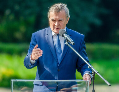 Miliony trafiły do polskich gwiazd. Gliński zapewnia, że decydował o tym...