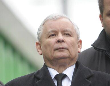 """PiS chce pomóc PO w deregulacji. """"Mamy pakiet Kaczyńskiego zamiast..."""