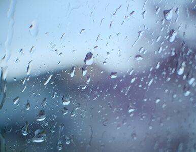 Niedziela będzie chłodna. Na wschodzie opady deszczu