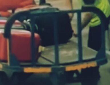 Pracownik lotniska okradał bagaże. Pasażer go nagrał i opublikował wideo
