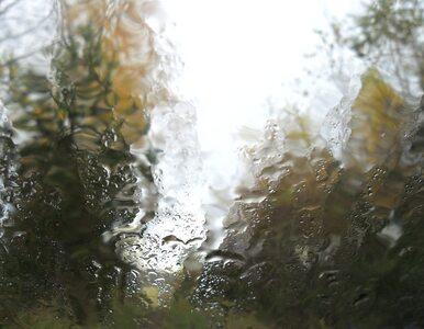 We wtorek słaby deszcz tylko na Pomorzu. Nad resztą kraju sporo słońca