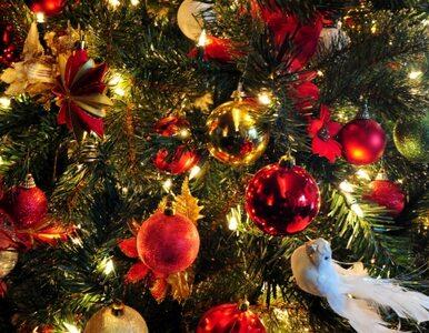 Boże Narodzenie. Tradycja sięgająca IV w.
