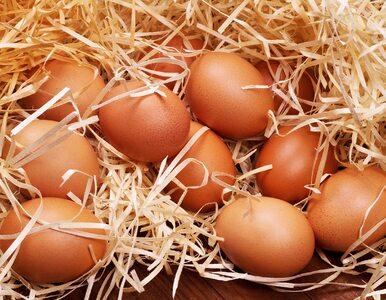 Jak łatwo i szybko obrać jajka? Ten prosty trik ułatwi ci życie!