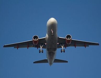 Pilot zrobił selfie ze stewardesą. Zawieszono go