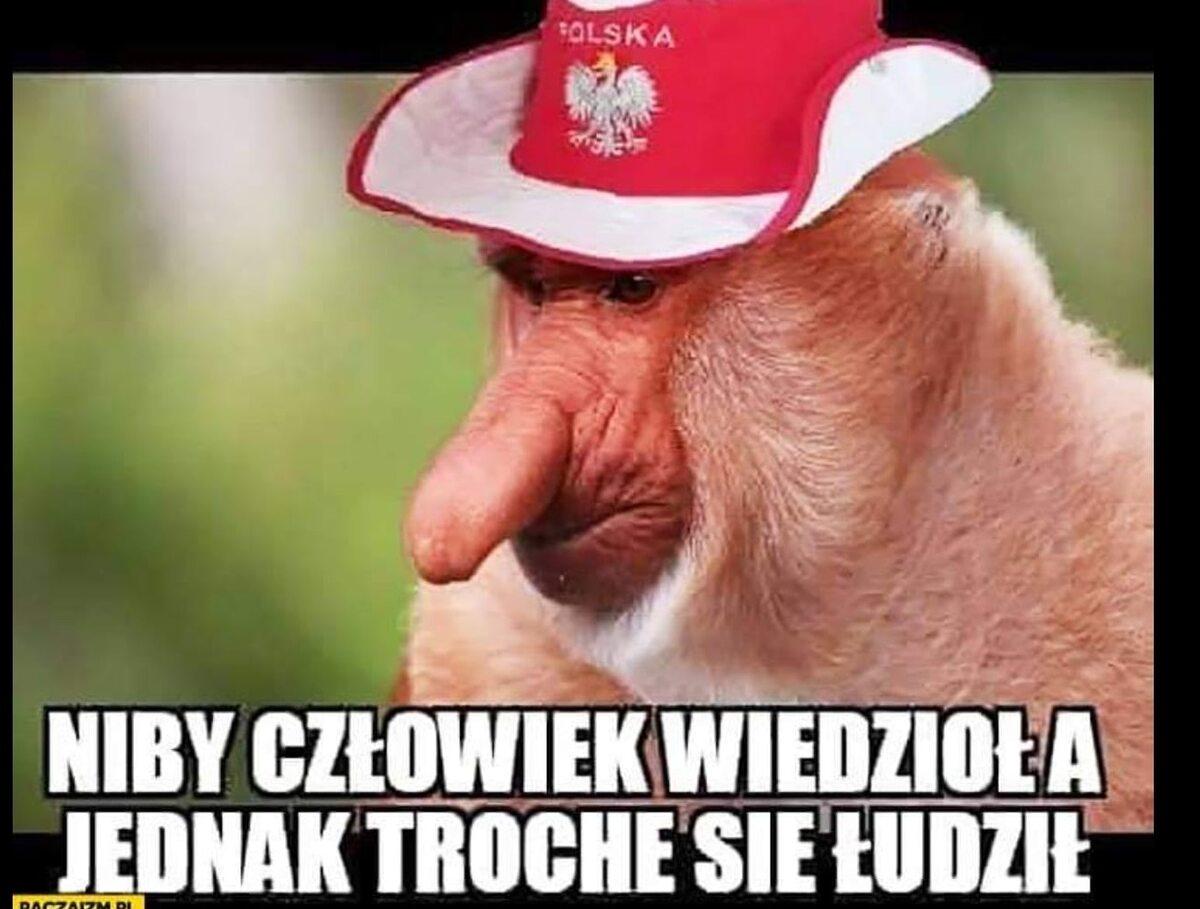 Mem po meczu Polska – Szwecja