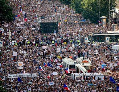 Ćwierć miliona Czechów wyszło na ulice. Domagają się dymisji premiera