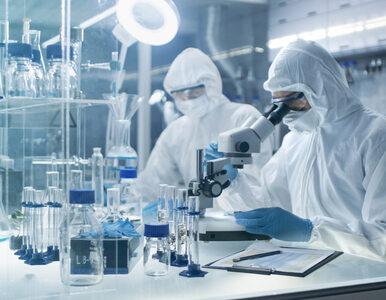 Przebadano próbki polskich pacjentów z podejrzeniem koronawirusa. Są wyniki