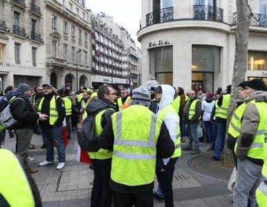 """Incydent podczas protestu """"żółtych kamizelek"""". Utytułowany bokser pobił..."""