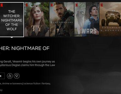 """Netflix ujawnił zarys fabuły animowanego """"Wiedźmina"""". Wiemy, kto będzie..."""