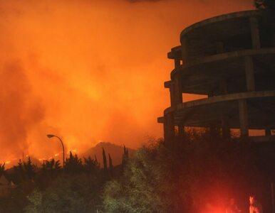 Pożary trawią Hiszpanię. Turyści ewakuowani