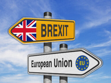 Brytyjski rząd przegrał w Sądzie Najwyższym. Brexitu jednak nie będzie?