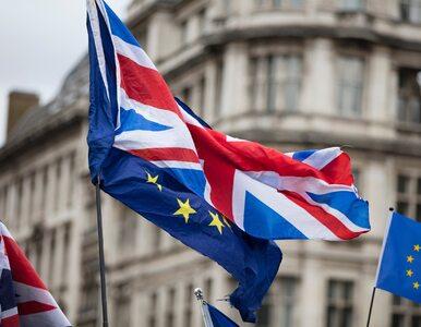 Wielka Brytania nie była w czołówce wyjazdów polskich studentów na Erasmusa
