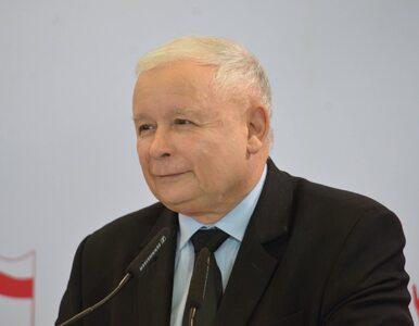 PiS po raz kolejny z ogromną przewagą. W Sejmie jeszcze trzy komitety