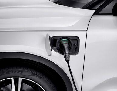 Koniec spalinowych Volvo. Kolejna firma ogłasza przejście wyłącznie na prąd