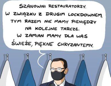Zamykanie lasów, otwieranie kasyn. Polska walka z wirusem w komiksach