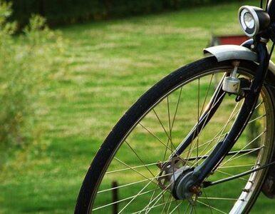 Polacy coraz częściej jeżdżą na rowerze