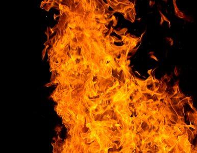 Płomienie strawiły halę w cukrowni