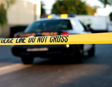Odgrywali scenkę podczas policyjnych ćwiczeń. Funkcjonariusz zastrzelił...