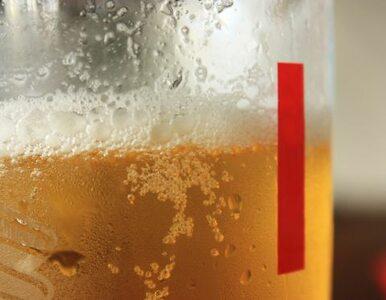 Kibice w Gdańsku wypili 120 tys. litrów piwa